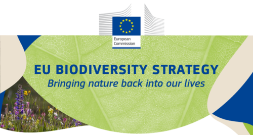 Biodiversity Strategy adopted